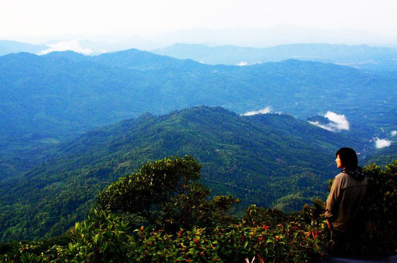 Day 1 Khao Luang National Park (L,D)