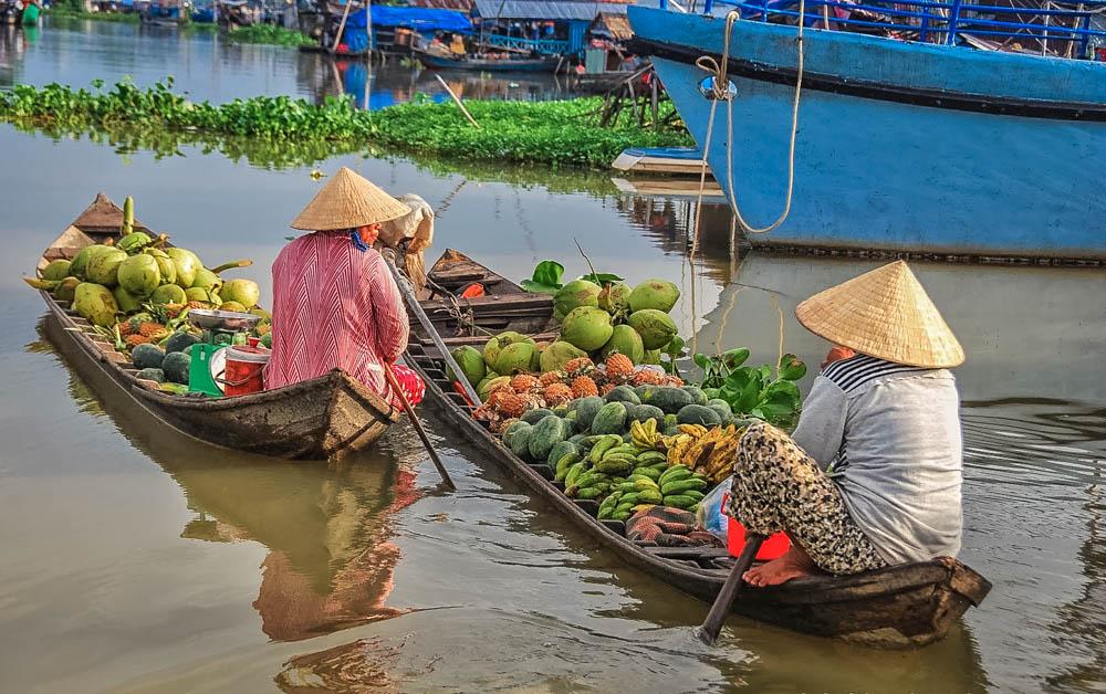 Картинки по запросу mekong delta