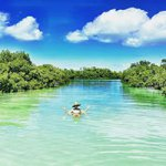 Eco & Nature Tours