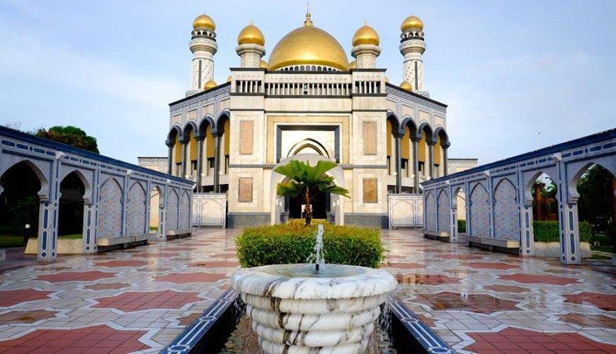 Brunei City Rainforest Tour