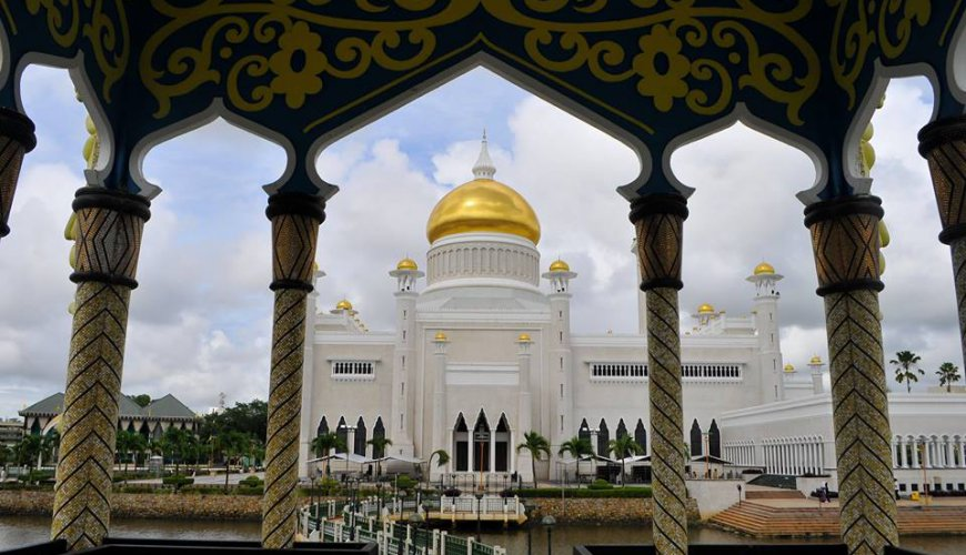 Brunei City Rainforest Tour