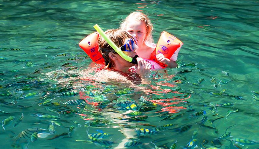 Four Islands Snorkeling Tour