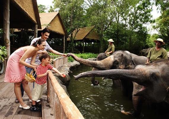 Singapore Leisure Tour